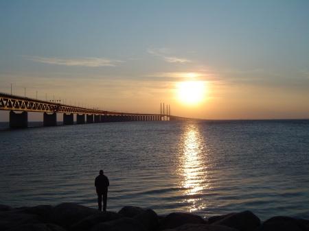 Fiske vid Öresundsbron